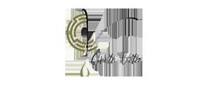 logo 5 s