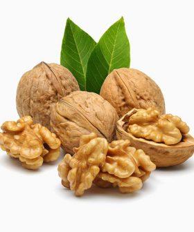 organic-walnut-dr-keskin-raw