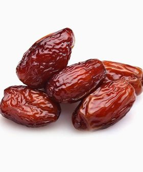 dried-dates-dr-keskin